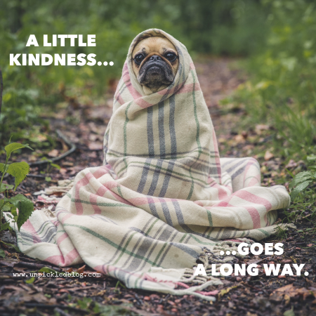A Little Kindness Goes a Long Way